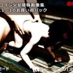 ワンコイン少女陵辱画像集 Vol.001~010お買い得パック / Girls Humiliation