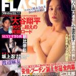 FLASH 2016-11-08号