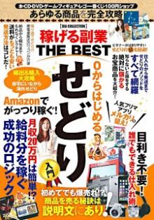 稼げる副業-THE-BEST-Kasegeru-THE-BEST.jpg