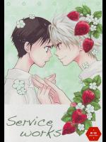 [RAYTREC]Service works