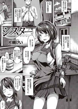 【エロ漫画】ブラコンの清楚な姉、弟の身代わりにヤンキーどもにレイプされてしまうwww