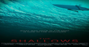 The Shallows Torrent Full HD Movie 2016 Download