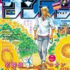 週刊少年サンデー 2019年32号 [Weekly Shonen Sunday 2019-32]