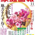 家庭画報 2019年11月号 [Katei Ga Ho 2019-11]