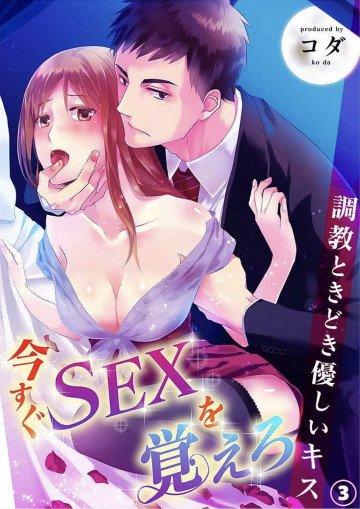 今すぐSEXを覚えろ-調教ときどき優しいキス 3