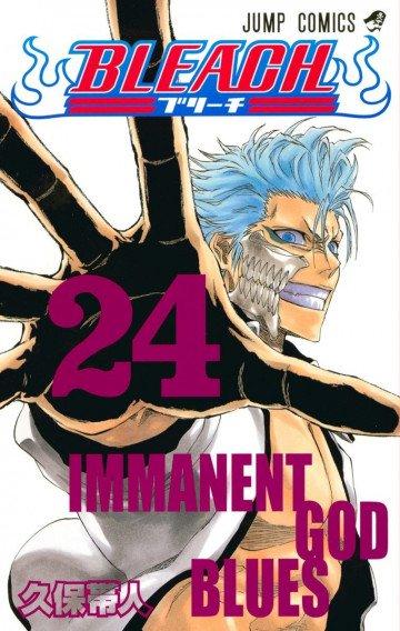 BLEACH カラー版 24