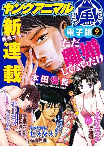 ヤングアニマル嵐No.9(2017年)